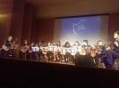 Concerto pela Paz - V.N. Gaia | 2017_4