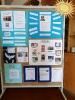 Educação para a Paz - Vila Nova de Gaia_7